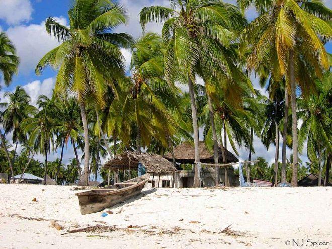 Zanzibar3